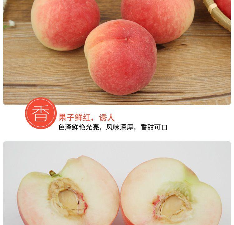 【5斤装】桃子水果一整箱新鲜血桃脆桃水密水蜜桃当季孕妇应季大毛桃【徐闻美食】